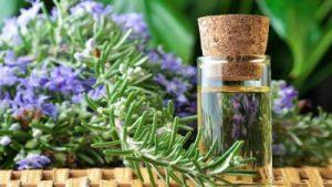Wellness im Dienste der Gesundheit: Die Bedeutung von Naturkosmetik bei der Körperpflege 23. und 24. März 2019-3