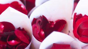 Valentine's Day in hotel Capital-1